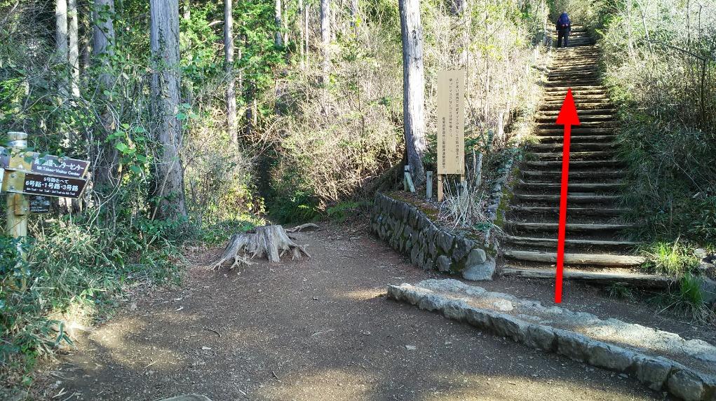 稲荷山 山頂直下の階段入口
