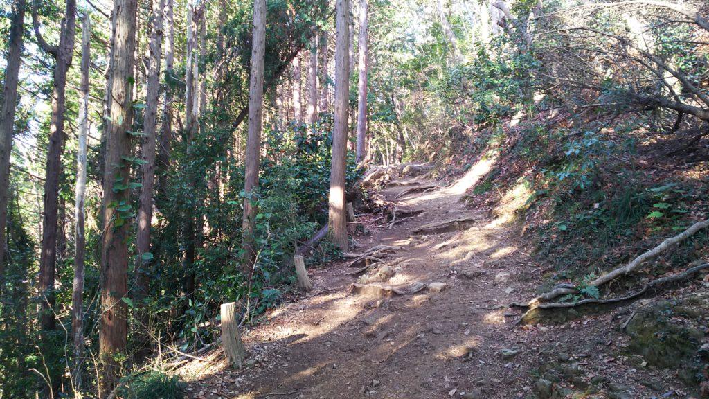 稲荷山 穏やかな登山道